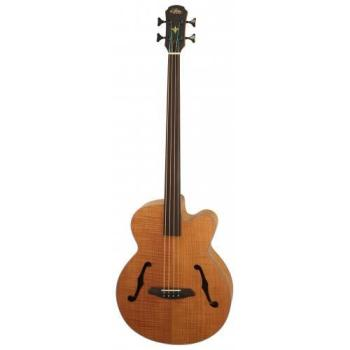 Aria Elecord Acoustic Bass F Hole Flame Top