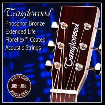 Phosphor Bronze Coated Acoustic Guitar String