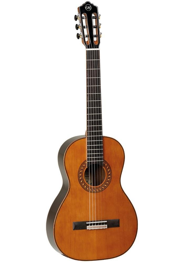 Tanglewood Dominar Parlour Classical Solid Cedar Top with Bag