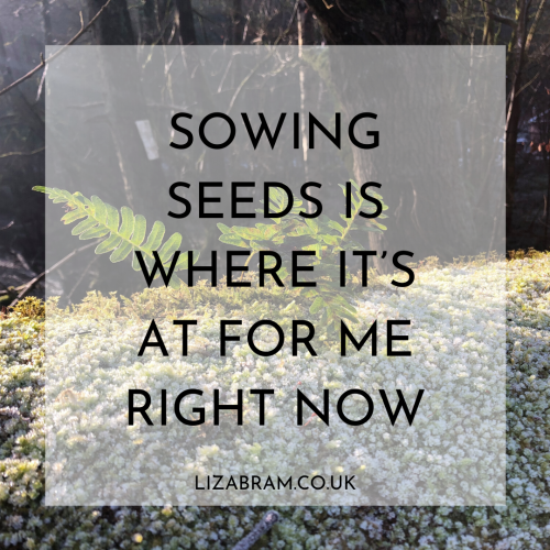 Blog - Sowing Seeds