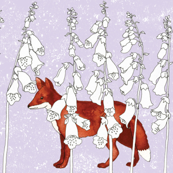 Foxgloves and Fox Greetings Card