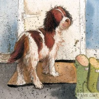 Patience Spaniel Card