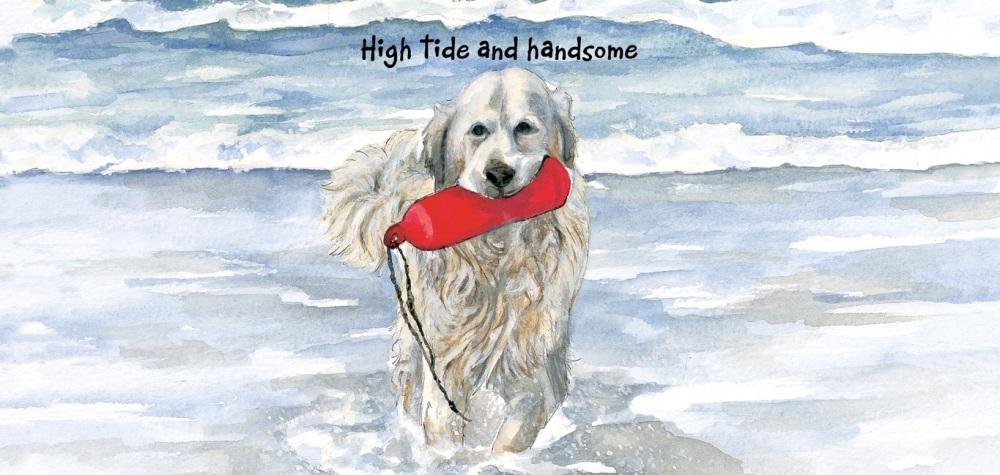High Tide Card