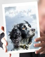 Live Life to the Full Spaniel Card