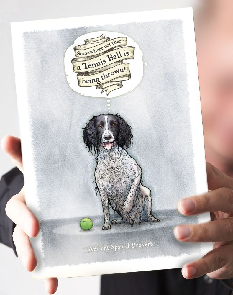 Tennis Ball Black & White Springer Card