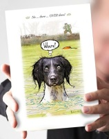 Where?...Black & White Springer Card