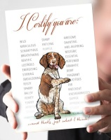 I Certify...Liver & White Springer Spaniel Card