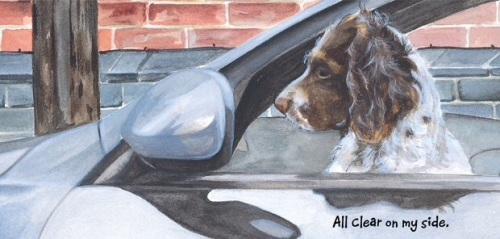 Parked Car Spaniel Card