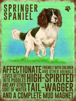Springer Spaniel Metal Sign