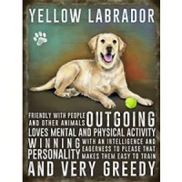 Yellow Labrador Metal Sign