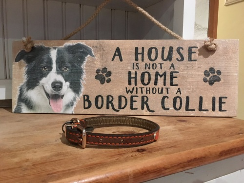 A House is not a Home Border Collie Wooden Hanging Sign