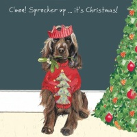 Sprocker Up Christmas Card
