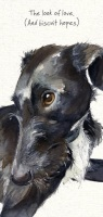 Look of Love Sighthound Card