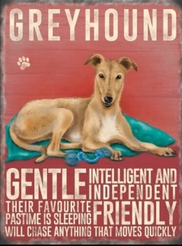 Greyhound (Cream) Metal Sign