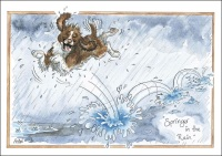 Springer in the Rain Card