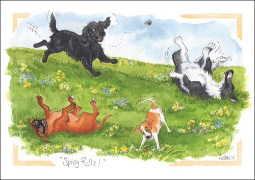 Spring Rolls Card