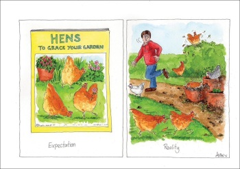Hens: the untold truth Card