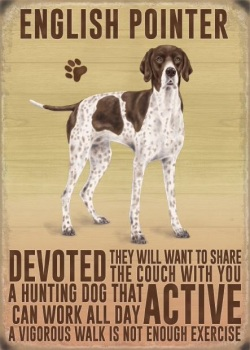 English Pointer Metal Sign