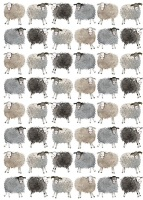 Sheep Gift Wrap