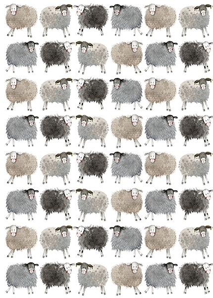 Sheep Gift Wrap