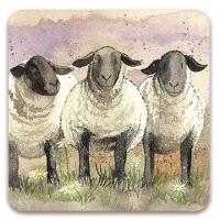 Suffolk Sheep Coaster