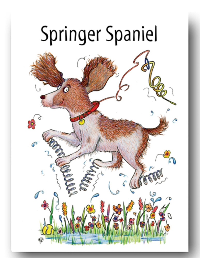 Springer Spaniel Card