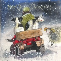 Collies Christmas Card Pack