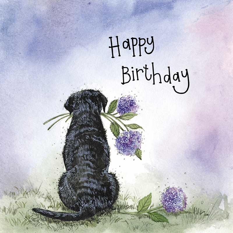 Sunshine Labrador Birthday Card