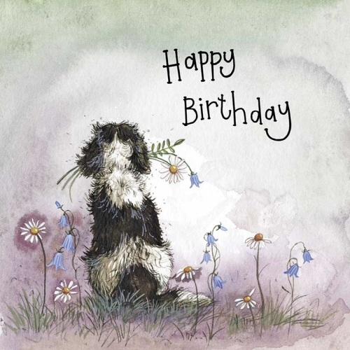 Sunshine Spaniel Birthday Card