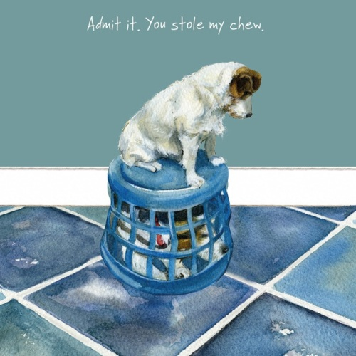 Admit it Jack Russell Card