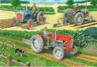 The Ploughing Match Card