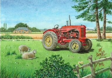 Massey and Sheep Card