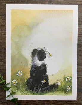 Collie and Daisies Art Print
