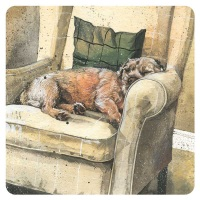Archie Border Terrier Coaster