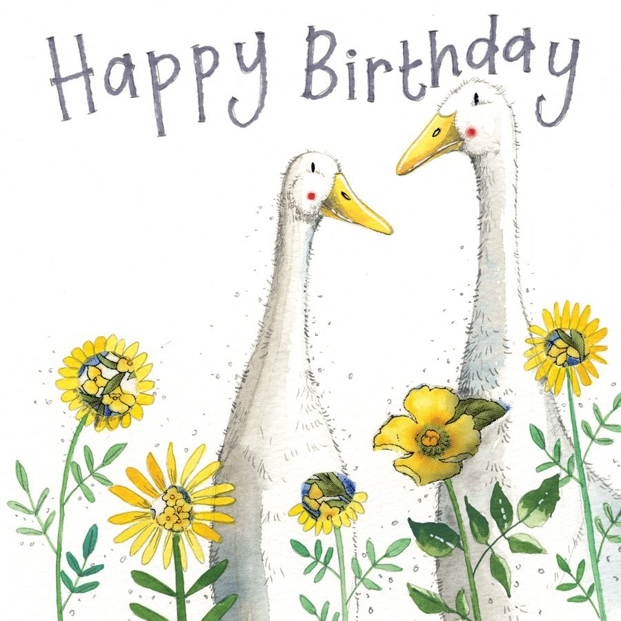 Birthday Ducks Card
