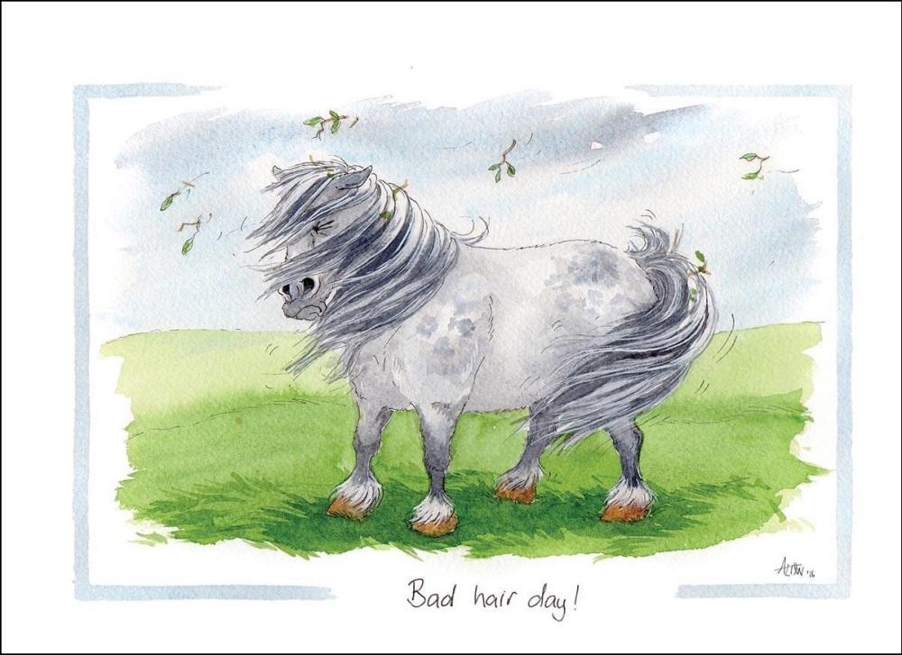 Bad Hair Day Card