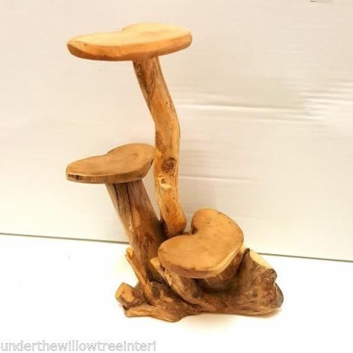 Small Coffee Root 3 Leaf Wooden Display Stand