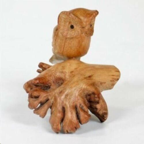 Hand Carved Jempinis wooden Owl on Chinaberry Parasite Wood