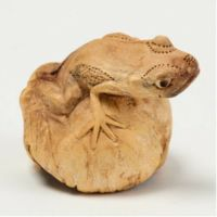 Hand Carved Beautiful Frog Toad on Chinaberry Parasite Wood