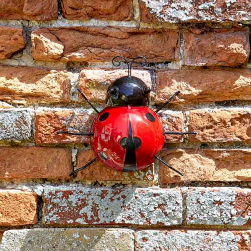 Ladybird Bug Wall Art