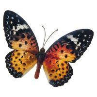 Orange Colourful Butterfly Wall Art