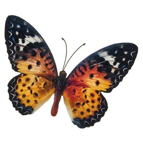 Orange Colourful Butterfly Wall Art