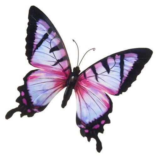 Pink Colourful Butterfly Wall Art
