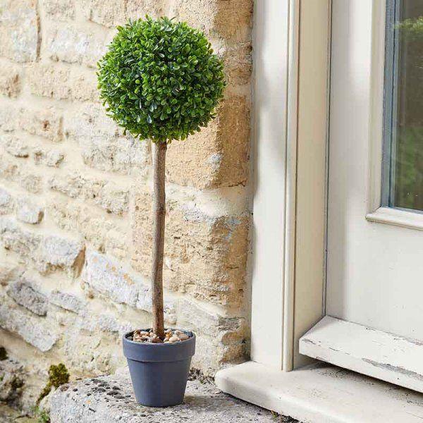 Uno Topiary Tree in pot