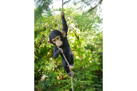 Quirky Climbing Monkey Hanging On Rope Garden Tree Ornament Statue Decoration