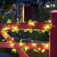 Ivy Firefly Solar String Lights