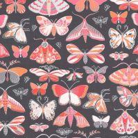 Masquerade Butterflies Moth Tamara Kate Joy Peach Butterfly Moths Coral Grey Cotton Fabric