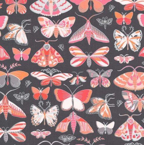 Masquerade Butterflies Moth Tamara Kate Joy Peach Butterfly Moths Coral Gre
