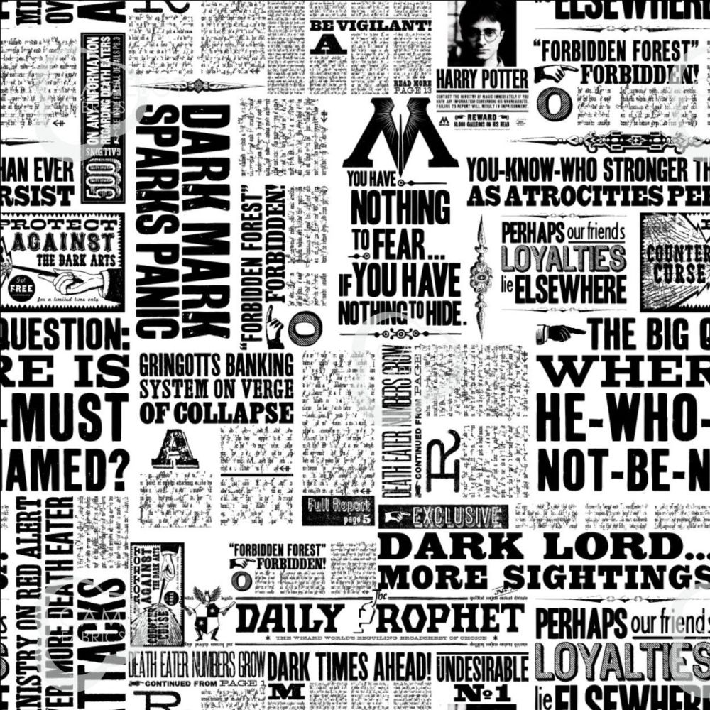 PRE-ORDER Harry Potter Newsprint Newspaper Daily Prophet Dark Lord Ministry