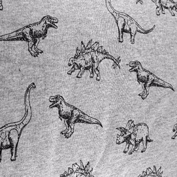 Dinosaur Brushed French Terry Dinosaurs Sweatshirt Jumper Fabric